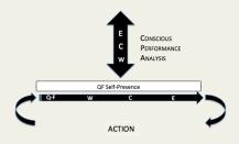 Conscious Performance Analysis